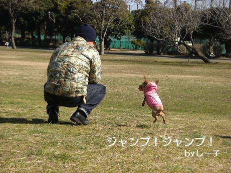 2月19日散歩2.jpg