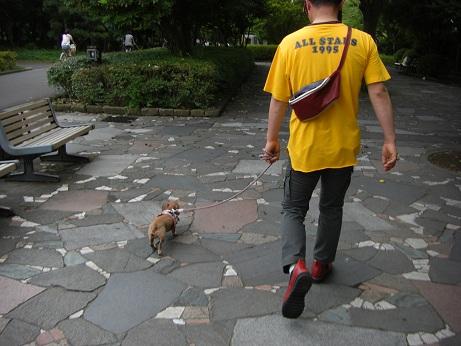 6月10日散歩.jpg
