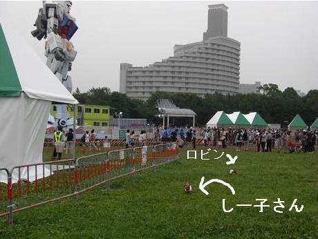 七夕1.JPG
