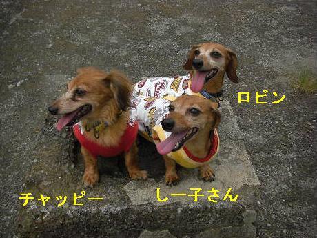 3姉妹.JPG